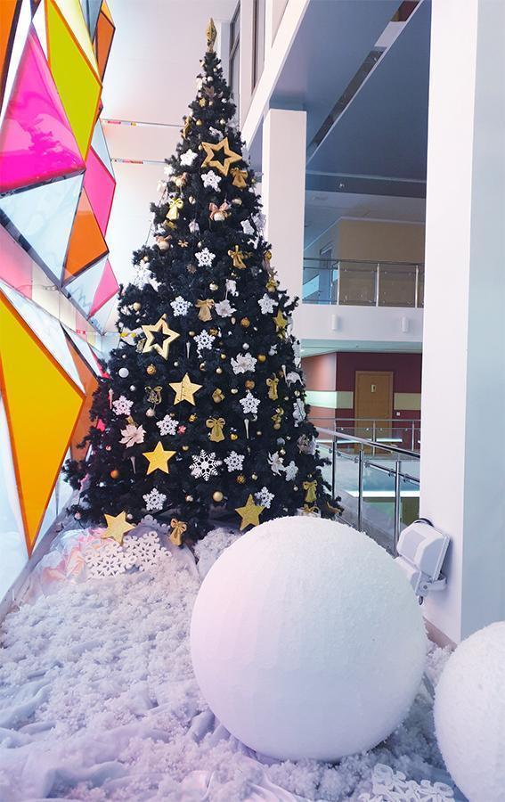 Новогодние ёлки - изображение